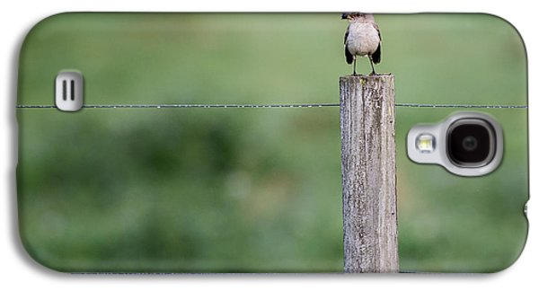 Minimalism Mockingbird Galaxy S4 Case by Bill Wakeley