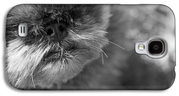 Griffon Galaxy S4 Case - Moby by Matthew Blum