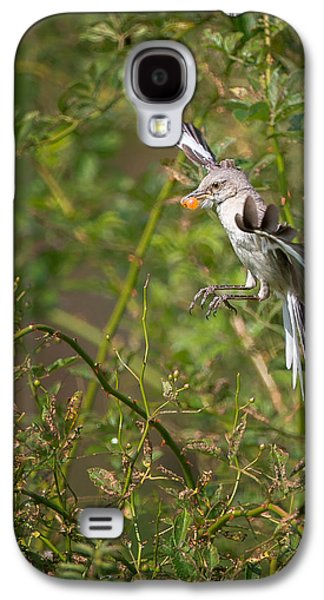 Mockingbird Galaxy S4 Case by Bill Wakeley