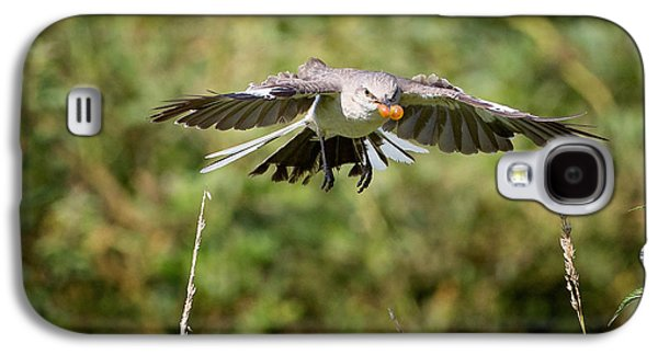 Mockingbird In Flight Galaxy S4 Case by Bill Wakeley