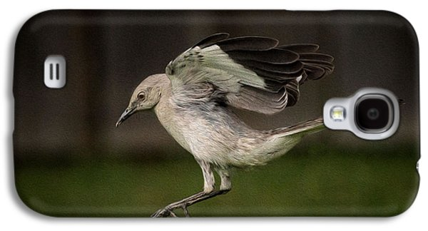 Mockingbird No. 2 Galaxy S4 Case by Rick Barnard