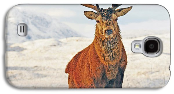 Monarch Of The Glen Galaxy S4 Case by Pat Speirs