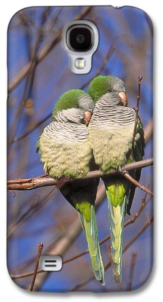 Monk Parakeets Galaxy S4 Case