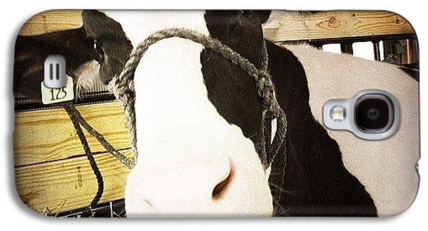 Ohio Galaxy S4 Case - Moo Cow by Natasha Marco