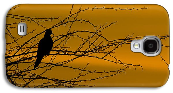 Morning Dove Galaxy S4 Case by Kelly Gibson