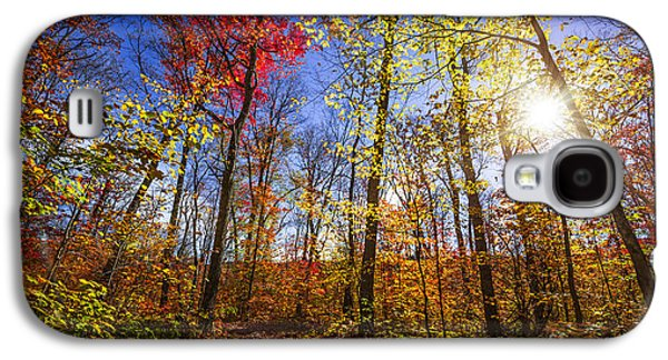 Morning In Autumn Forest Galaxy S4 Case