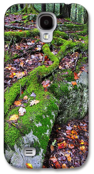 Moss Roots Rock And Fallen Leaves Galaxy S4 Case by Thomas R Fletcher