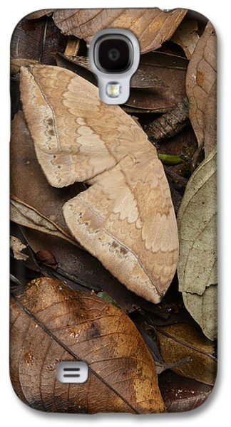 Moth Camouflaged Against Leaf Litter Galaxy S4 Case by Ch'ien Lee