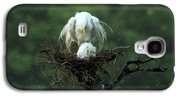 Egret Galaxy S4 Case - Motherly Love by Libby Zhang