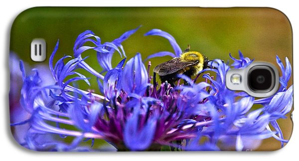 Mountain Cornflower And Bumble Bee Galaxy S4 Case by Byron Varvarigos