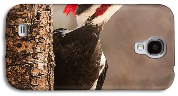 Mr. Pileated Galaxy S4 Case