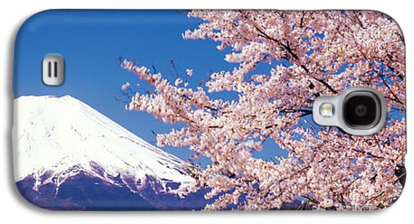 Mt Fuji Cherry Blossoms Yamanashi Japan Galaxy S4 Case by Panoramic Images