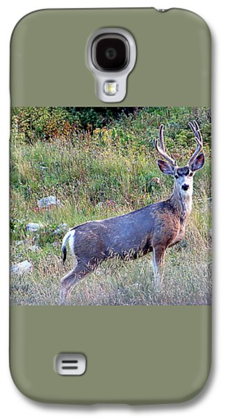 Galaxy S4 Case featuring the photograph Mule Deer Buck by Karen Shackles