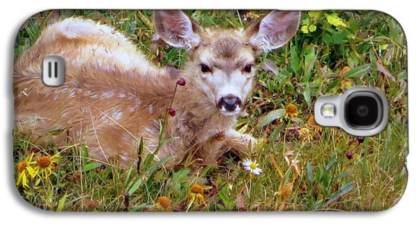 Galaxy S4 Case featuring the photograph Mule Deer Fawn by Karen Shackles