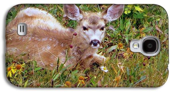 Mule Deer Fawn Galaxy S4 Case by Karen Shackles