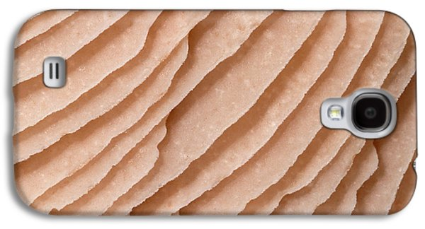 Mycena Fungus Gills Abstract Galaxy S4 Case by Nigel Downer