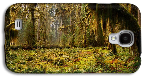 Mystical Forest Galaxy S4 Case by Leland D Howard