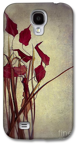Nature Morte Du Moment  01 - Pr03 Galaxy S4 Case by Variance Collections