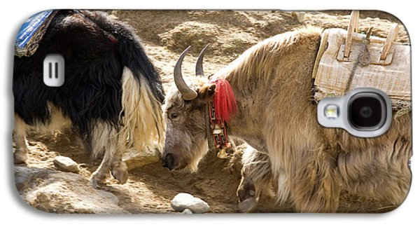 Nepal Yak Move Along The Everest Base Galaxy S4 Case by David Noyes