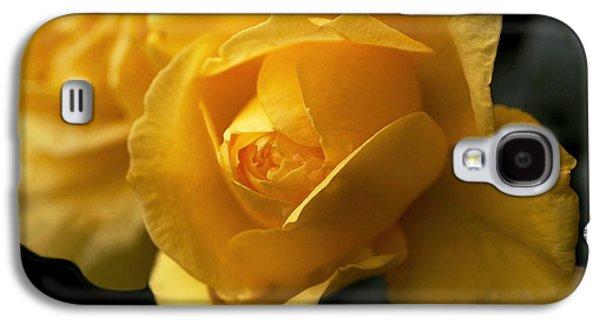 New Yellow Rose Galaxy S4 Case