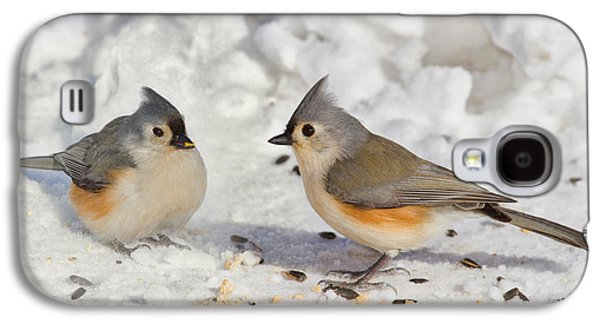 Nice Pair Of Titmice Galaxy S4 Case by John Absher