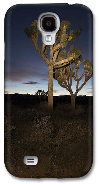 Night Light Painting Joshua Tree National Park Galaxy S4 Case