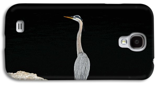 Galaxy S4 Case featuring the photograph Night Of The Blue Heron 2 by Anthony Baatz