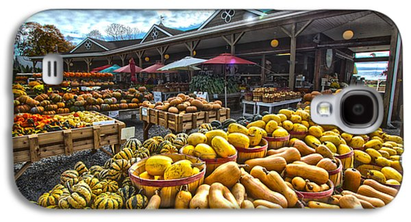 North Fork Farmstand Galaxy S4 Case by Robert Seifert