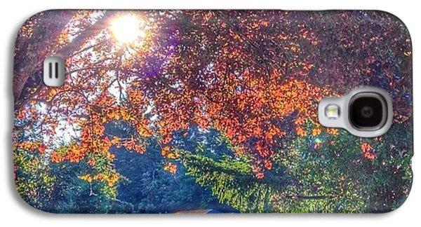 Sunny Galaxy S4 Case - Oak Street Early Evening Light by Anna Porter