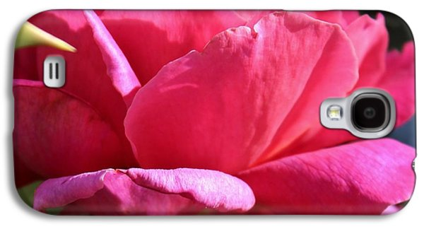Ode To A Pink Rose Galaxy S4 Case