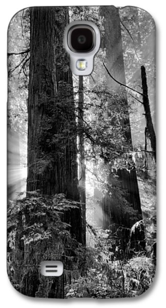 Old Growth Forest Light Black And White Galaxy S4 Case