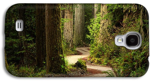 Old Growth Forest Route Galaxy S4 Case