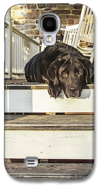 Old Porch Dog Galaxy S4 Case