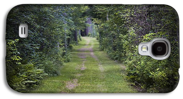 Old Road Through Forest Galaxy S4 Case by Elena Elisseeva