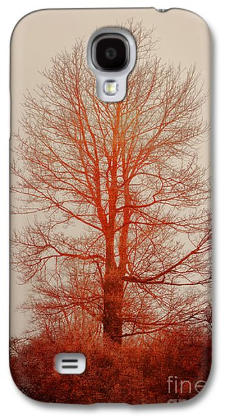 On Fire In The Fog Galaxy S4 Case by Lois Bryan