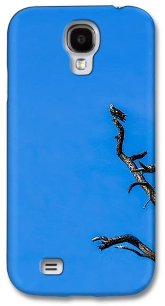 Osprey Galaxy S4 Case - On Point by Marvin Spates
