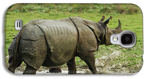 One-horned Rhinoceros, Coming Galaxy S4 Case by Jagdeep Rajput