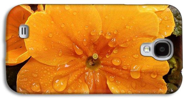 Orange Galaxy S4 Case - Orange Flower With Water Drops by Matthias Hauser