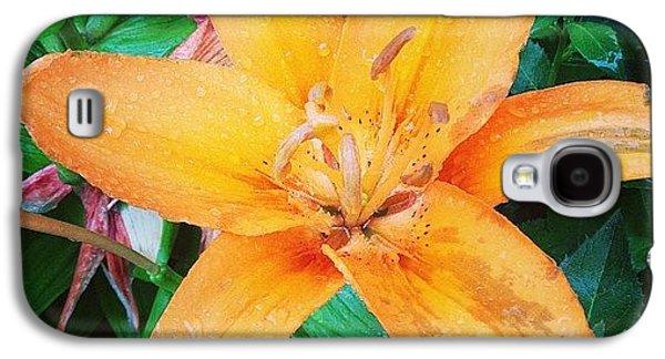 Orange Galaxy S4 Case - #orange #lily After The #rain Is Still by Teresa Mucha