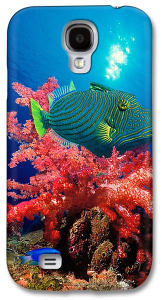 Orange-lined Triggerfish Balistapus Galaxy S4 Case by Panoramic Images