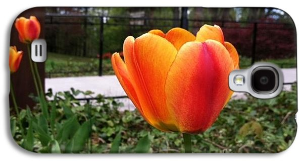 Orange Tulip Galaxy S4 Case