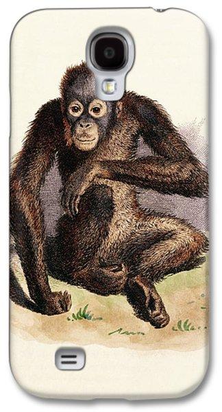 Orangutan Galaxy S4 Case - Orangutan by King's College London