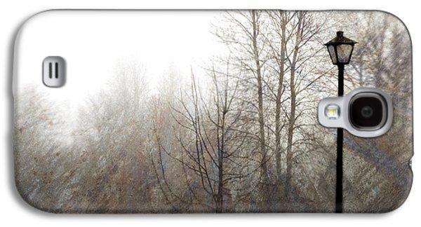Oregon Winter Galaxy S4 Case by Carol Leigh