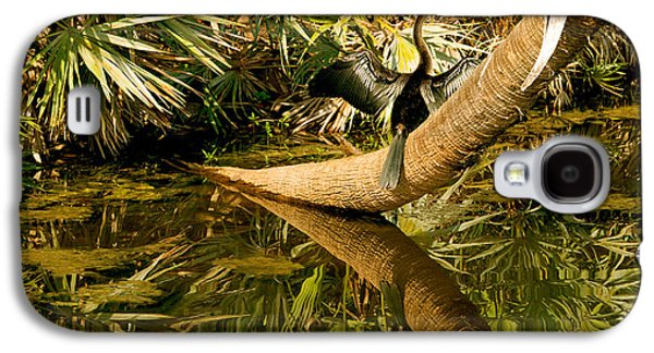 Oriental Darter Anhinga Melanogaster Galaxy S4 Case by Panoramic Images