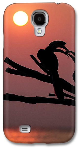 Oriental Pied Hornbills Galaxy S4 Case by Paul Williams