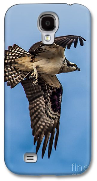 Osprey Flying Away Galaxy S4 Case by Robert Bales