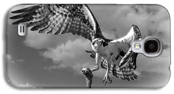 Osprey In The Clouds Black And White Galaxy S4 Case