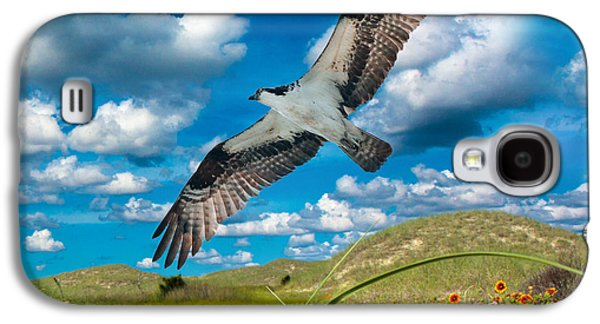 Osprey On Shackleford Banks Galaxy S4 Case by Betsy Knapp