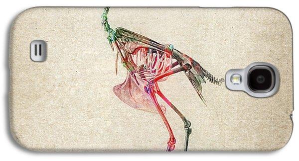 Osteology Of Birds Galaxy S4 Case
