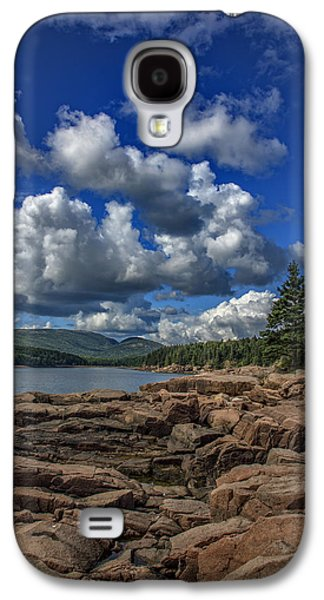 Otter Galaxy S4 Case - Otter Point Afternoon by Rick Berk